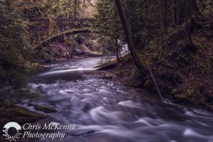 Whatcom Falls Bridge 1557-Edit.jpg